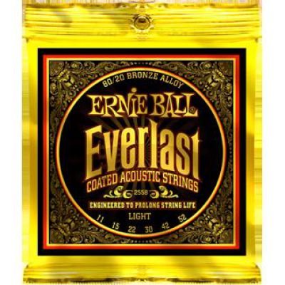 Ernie Ball EVERLAST COATED BRONZE LIGHT