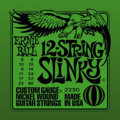 Ernie Ball NICKEL WOUND 12 STRING SLINKY